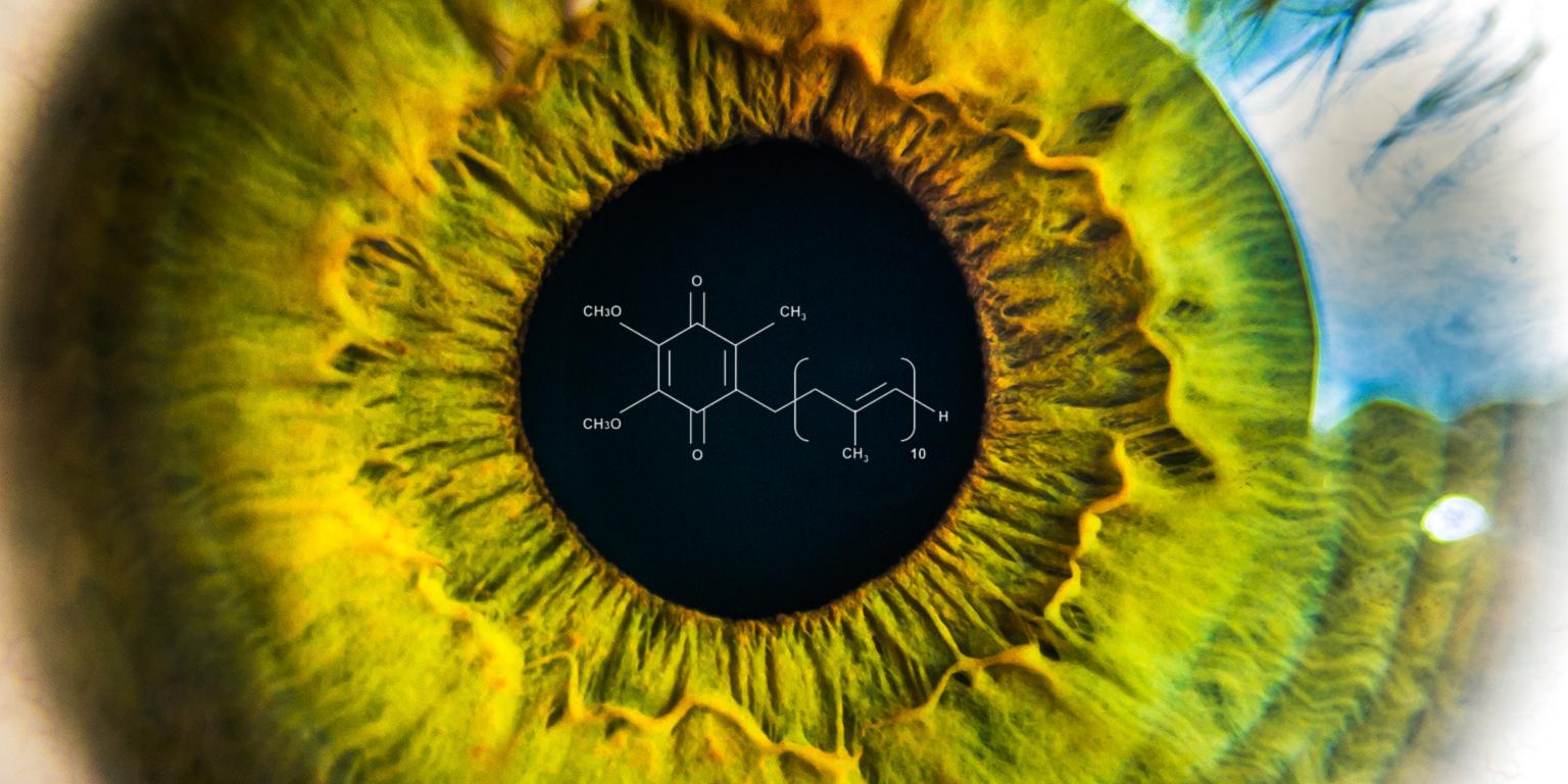 CoQ10, un effet bénéfique sur la cornée?