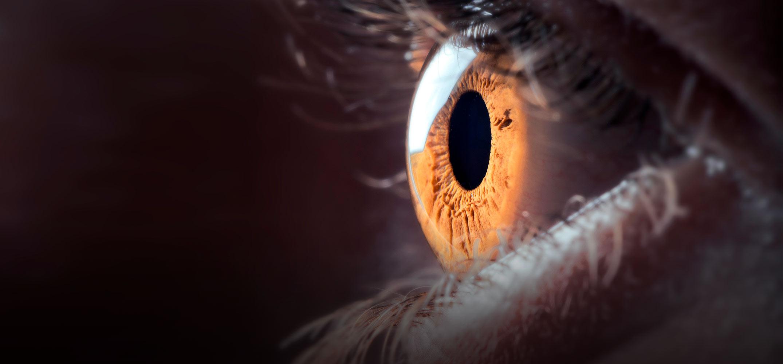 Omega-3 en diabetische retinopathie: een kwestie van evenwicht